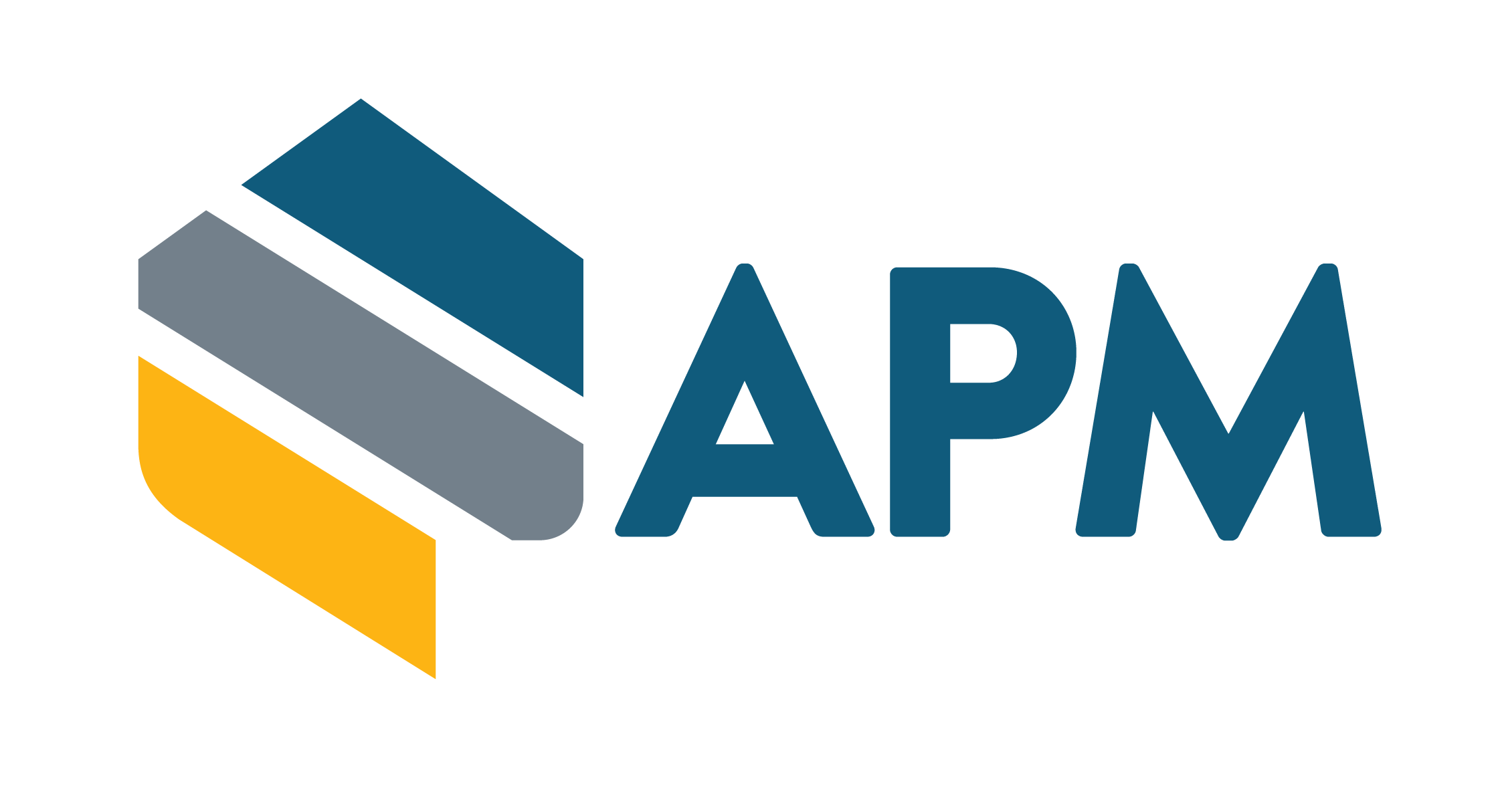 APM 2018 Logo APM