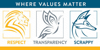 APM Core Values
