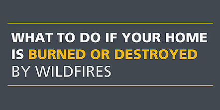 Banner image what to do if home burned by wildfire