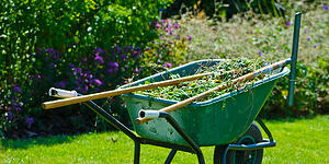 Gardening maintenance tools