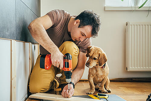Man doing renovation work at home with his dog