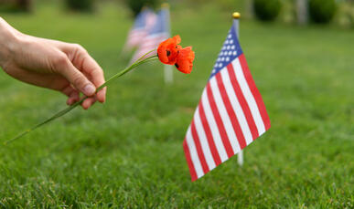 Memorial Day Cemetery Flower
